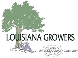 Louisiana Growers